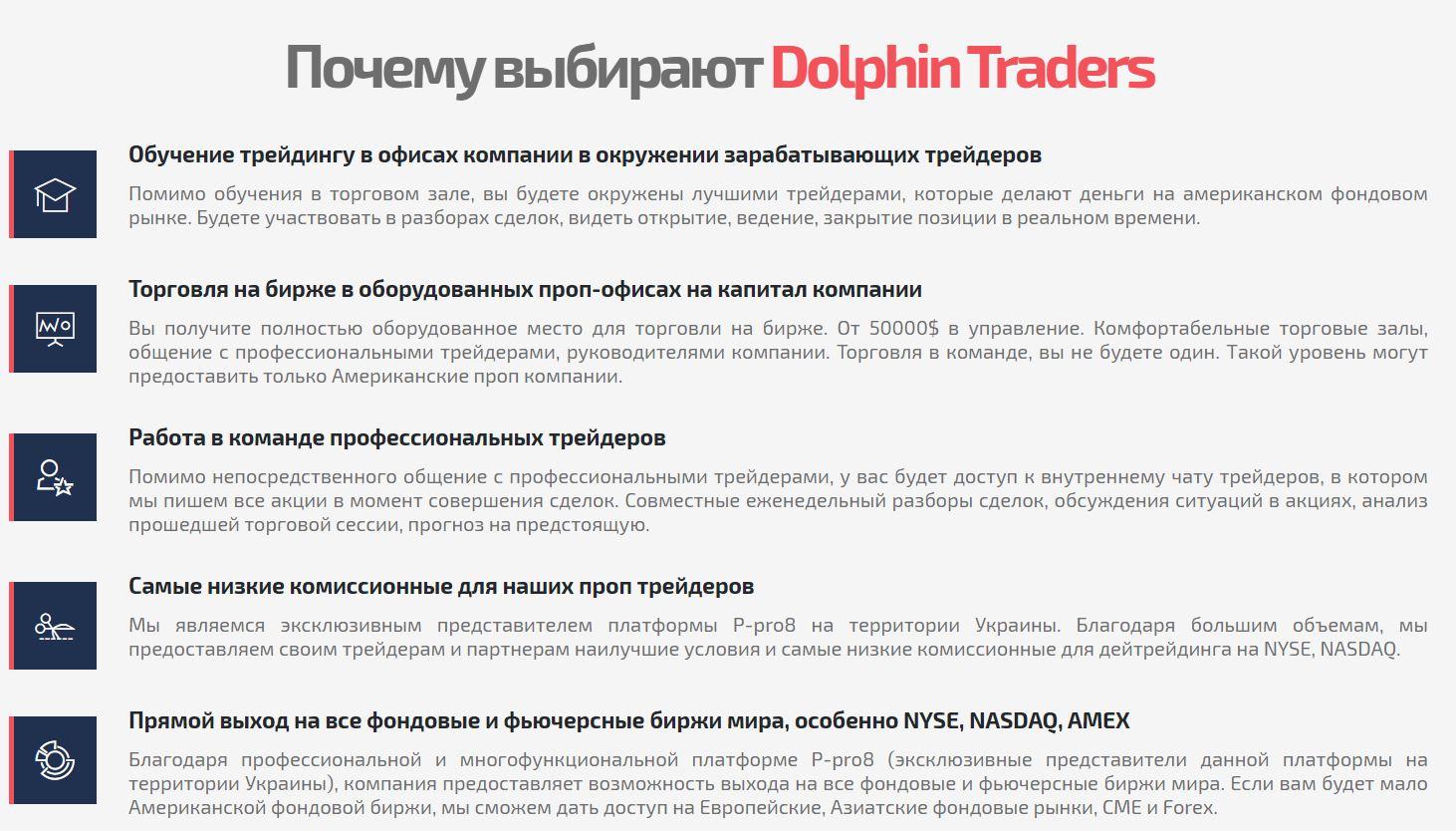 dolphin traders курсы трейдеров плюсы